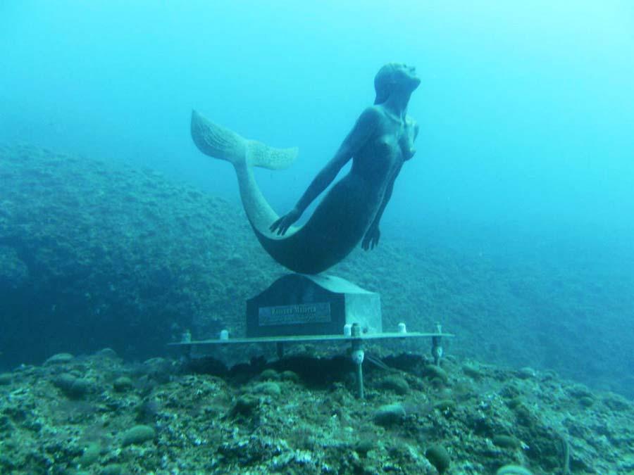 "Siracusa ""Capitale Mediterranea""  nel Diving e Snorkeling"
