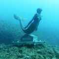 Statua Rossana Maiorca ( Ph. tratta dal web)
