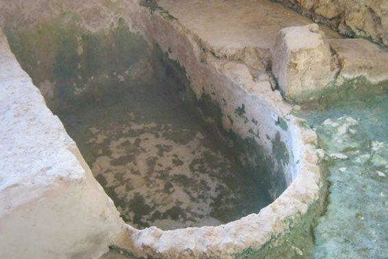 altri-resti-villa-tellaro-ph-gianni-grillo